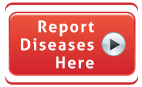 Report Diseases Here